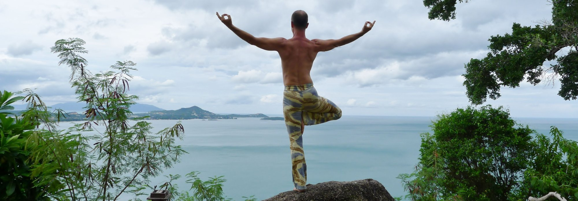 Achtergrond, tree pose by Bendie-Yoga.com